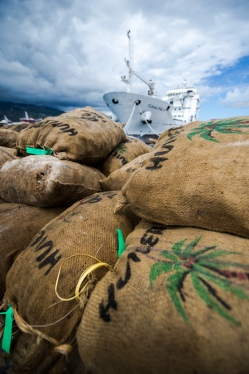 Tahiti - Papeete - Des sacs de Coprah en provenance des îles Tuamotu viennent d'être débarqués à quai. Ils vont être envoyés à l'huilerie de Tahiti pour la confection du monoï.