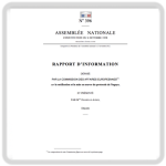 Rapport d'information ASSEMBLÉE NATIONALE