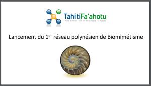 Lancement du 1er réseau polynésien de Biomimétisme